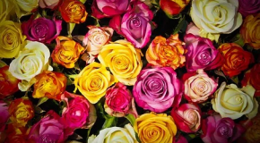 SPECIAL ST VALENTIN : Faites lui livrer directement des fleurs!
